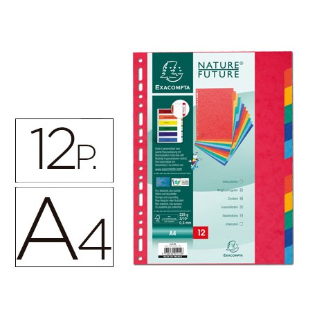 Separador Exacompta A-4 12 colores cartulina 1412
