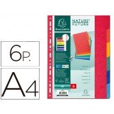 Separador Exacompta A-4 6 colores cartulina 1406
