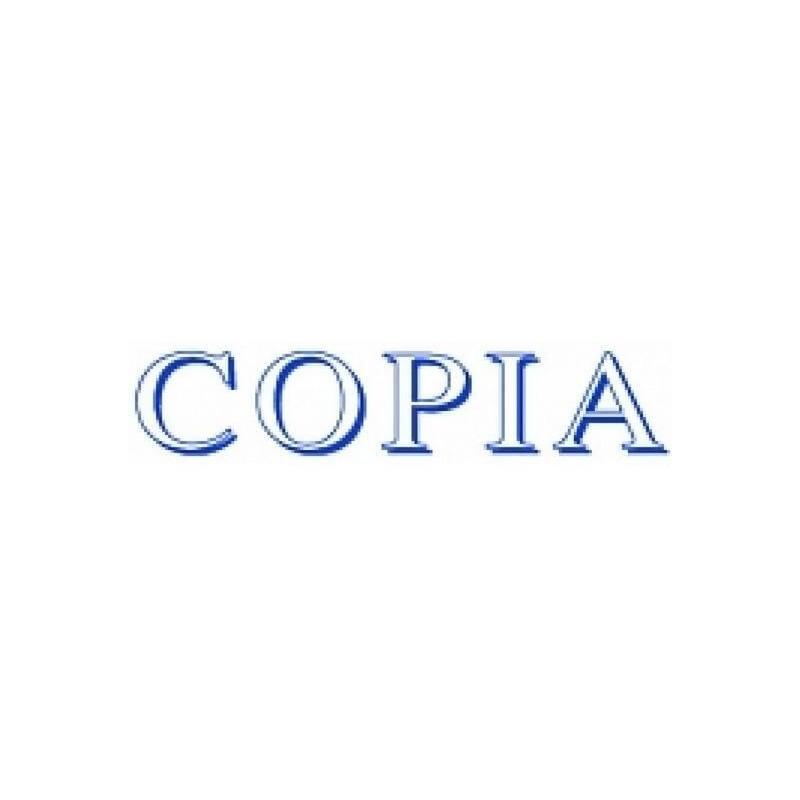 Sello Trodat Printy 4911 COPIA azul